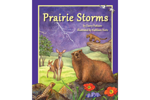Prairie Storms: How prairie animals survive storms across a year.